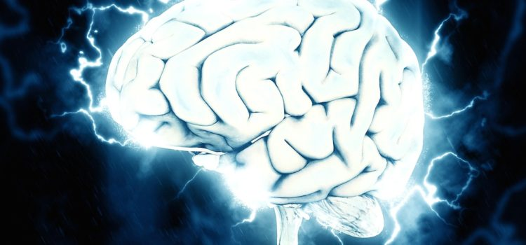 GUT MICROBES LINKED TO SEIZURES